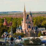 Success Story: A Family Trip to Disney World with Rewards Points
