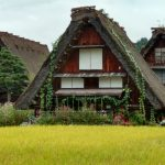 Success Story: Newlyweds Use Travel Rewards to Tour Japan