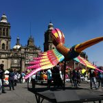 Booking Hotels in Mexico City with Points